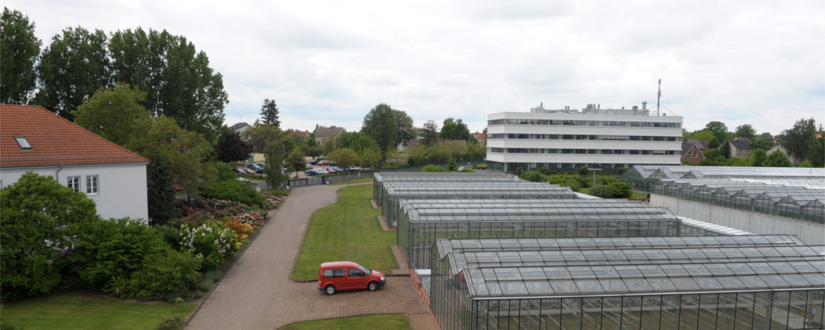 Leibniz-Institute of Vegetables and Ornamental Crops (IGZ)